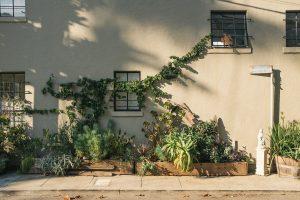 waterafvoer in tuin