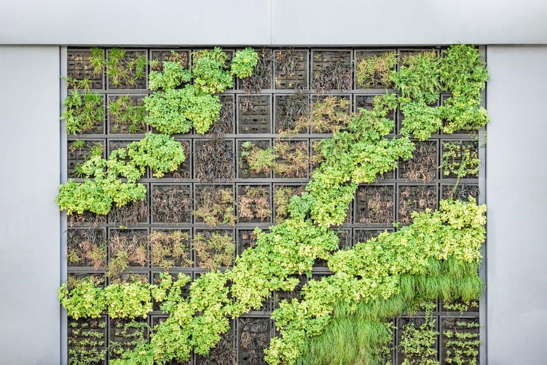 verticale tuin maken thuis