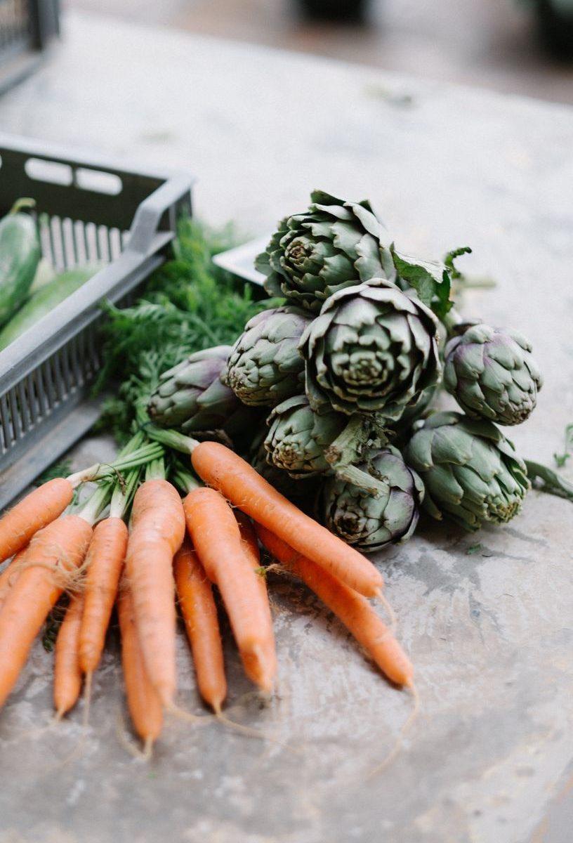 wortels thuis kweken