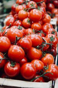 tomaten thuis verbouwen